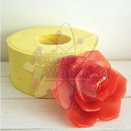 Handmade Soap Mould